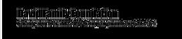 DFF-Logotype.png