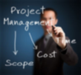 Project manager for businesses
