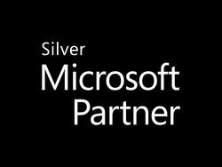 MS Silver logo Black