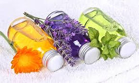 Aromatherapie Seminar Zürch