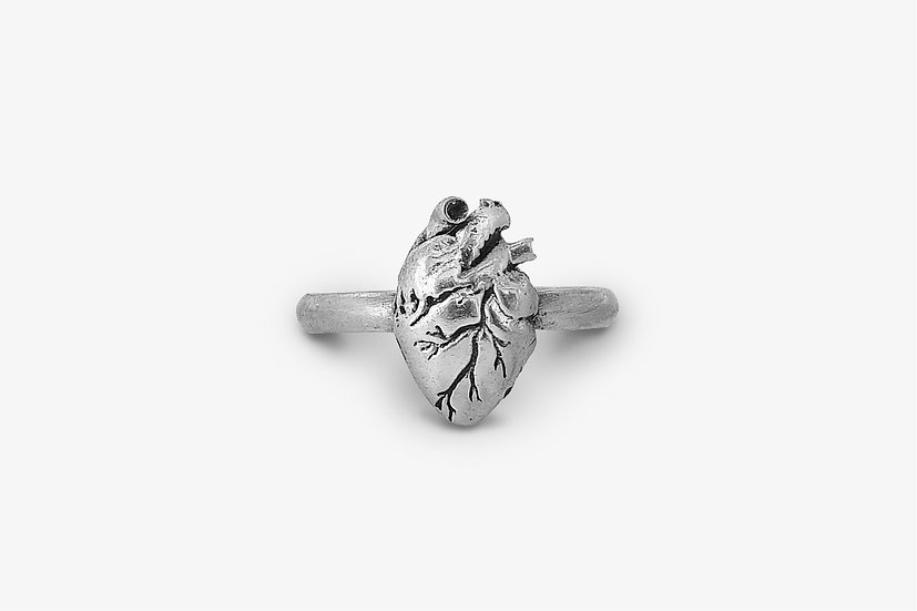 fedina-con-cuore-anatomico