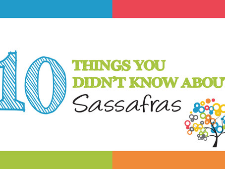 10 Things You Never Knew About Sassafras Marketing