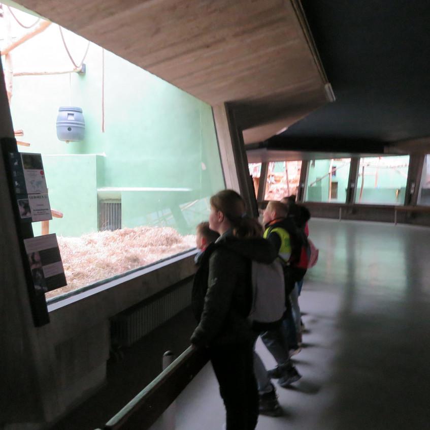 dierentuin deel 2 (50)
