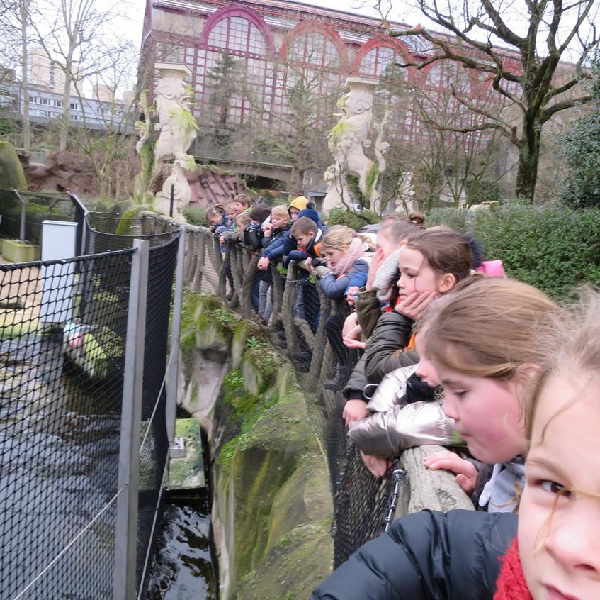 dierentuin deel 2 (20)