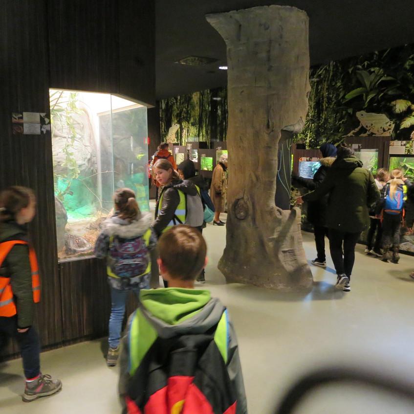 dierentuin deel 2 (17)