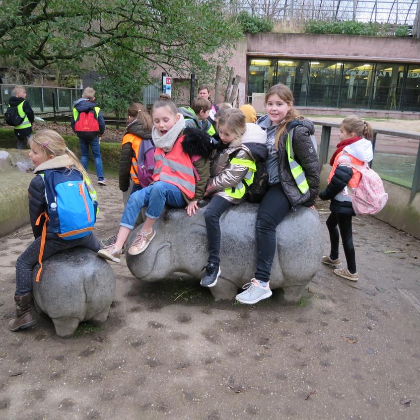 dierentuin deel 2 (24)