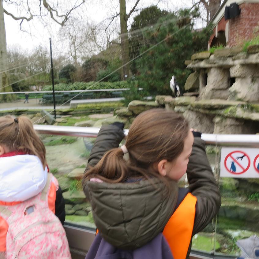 dierentuin deel 2 (59)
