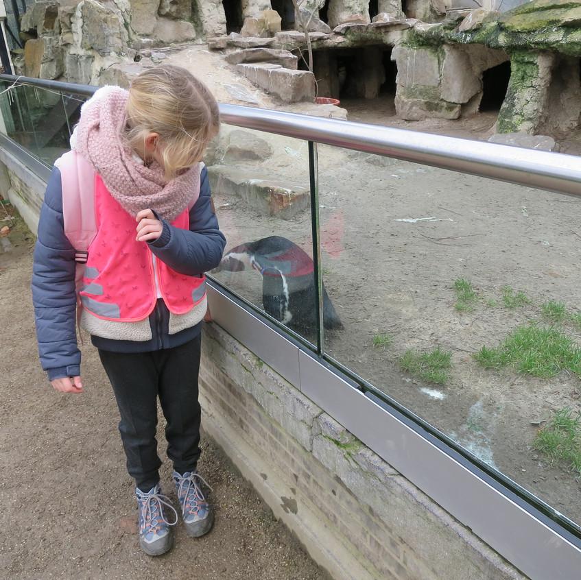 dierentuin deel 2 (62)