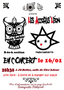 Concert Cirque - janvier 2016