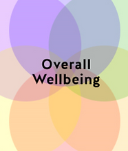 Capture Wellbeing Title.PNG