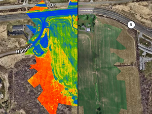 NDVI Mapping.PNG