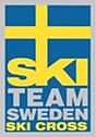Ski Cross.png