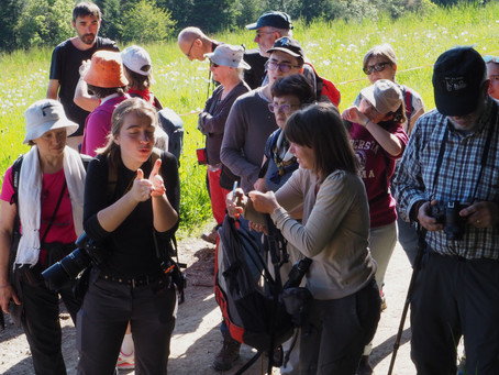 Biodiversité et photo dans le Pilat avec Jessica Buczeck
