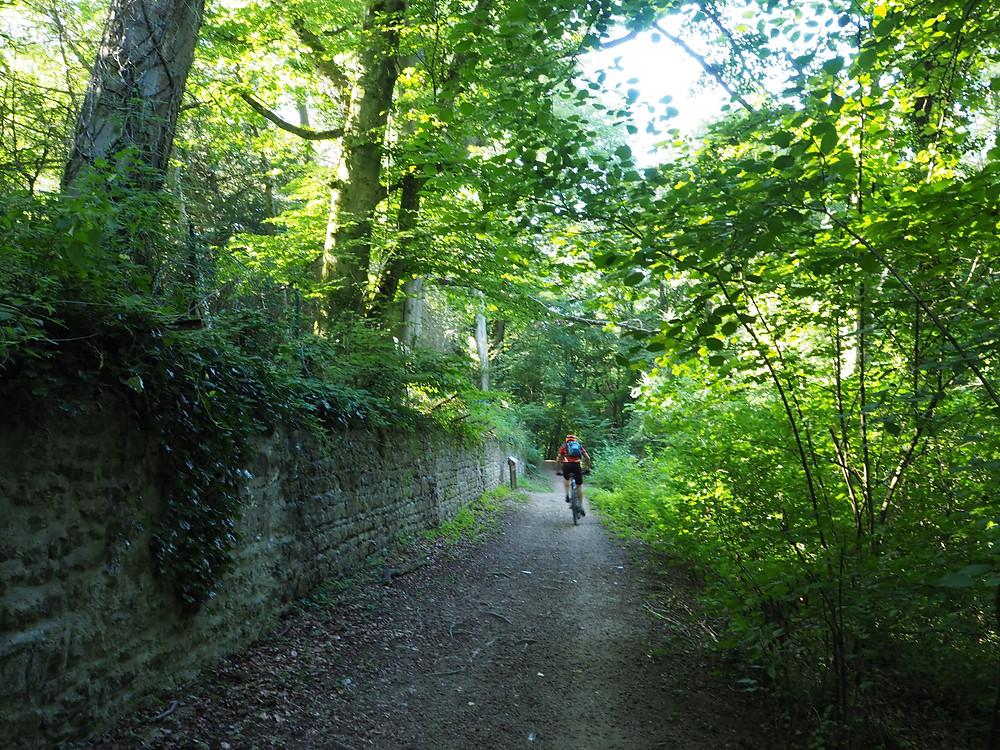 un cycliste dans le vallon de Rochecardon