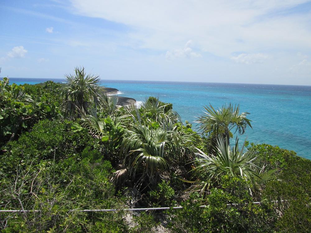 île tropicale Bahamas