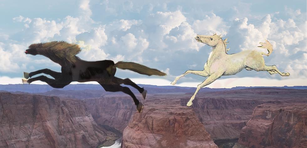 chevaux sautant au-dessus du grand canyon