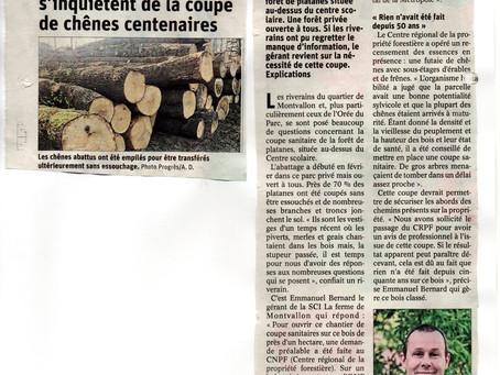 Petit bois de Montvallon : J'ai rencontré la fille du coupeur de bois
