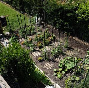 jardin déconfiné.jpg