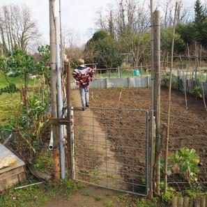 lapatience du jardinier.JPG