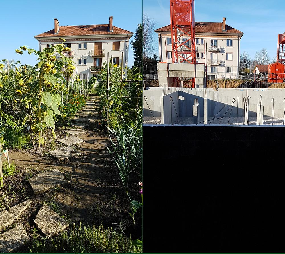 la grue et les profondes fondations ont remplaé les tournesols, les tomates et les poireaux