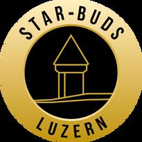 Star-Buds-Luzern Logo