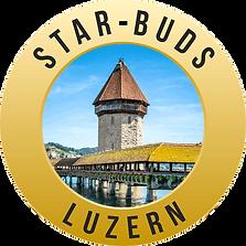 Logo%20Starbuds%20real_edited.png