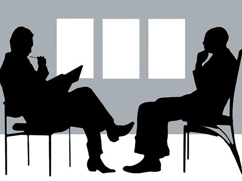 Lot.111 Orientamento professionale per una persona in incontro di gruppo