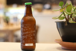 Which Kombucha is Right for You?