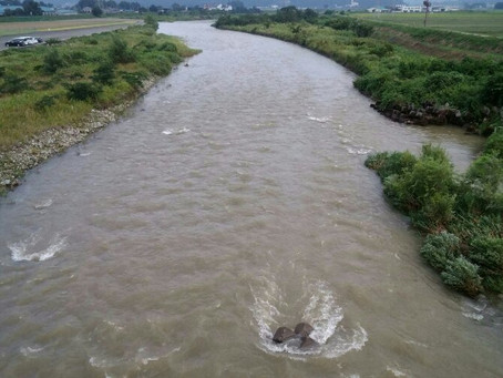 8月17日 真名川の様子