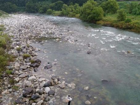 8月24日 九頭竜川の様子