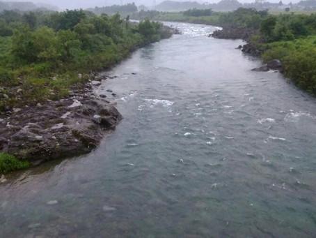 7月2日 九頭竜川の状況