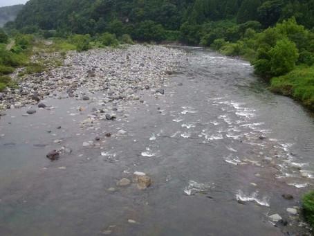 7月19日(金)九頭竜川の状況