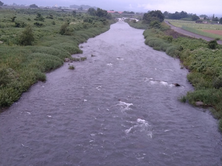 7月14日(水)真名川の状況