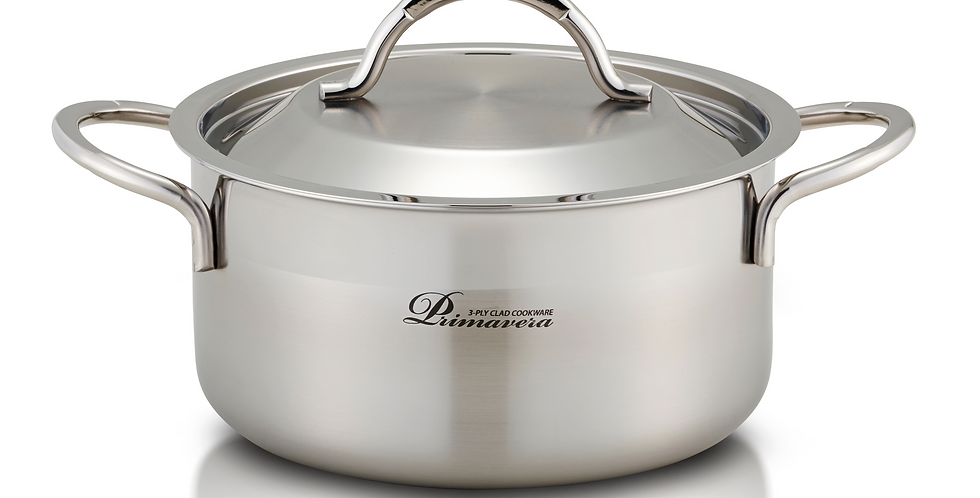 Stainless Steel Pot - 2 Handle