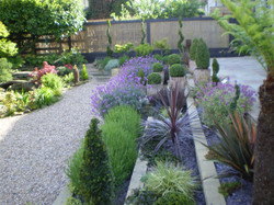 garden plants shaped and pruned