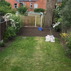 Garden in stages before landscaping