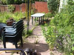 Another neglected garden