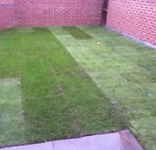 all turf was rolled out around the patio, slabs was brushed clean