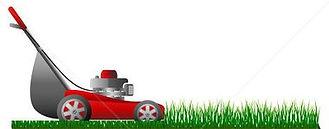 grass cut service, lawns mowed regularly
