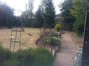 garden and path cleared from overgrowth bushes trimmed back and brambles ivy and weeds cut down and cleared