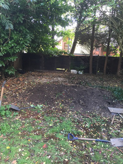Shed now removed, ground cleared