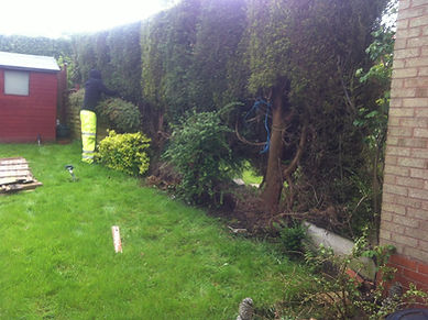 fetched old picket fence out for a 3ft fence along side and bottom of garden