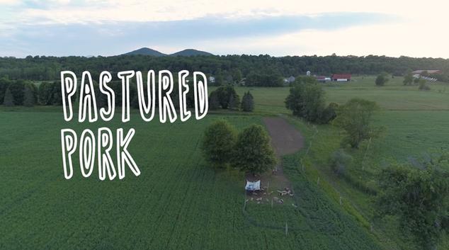 Essex Farm: Pastured Pork Experiment