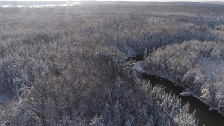 Northern Michigan: Winter 2019
