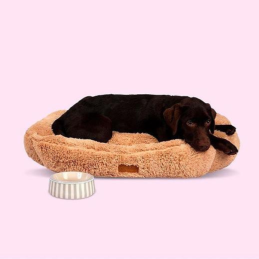 Dubex pet supplies