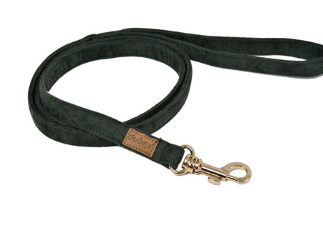 G Dog Series leashes