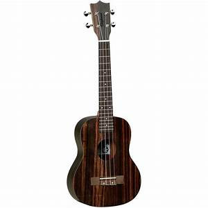 TANGLEWOOD TWT20