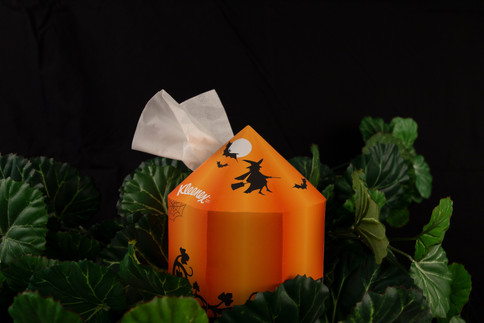 Photography of Pumpkin
