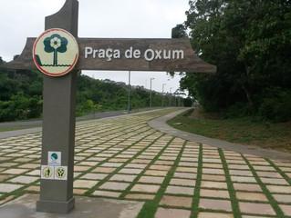 Instituto Steve Biko levará Aulas, Poesia, Música e Teatro ao Parque São Bartolomeu
