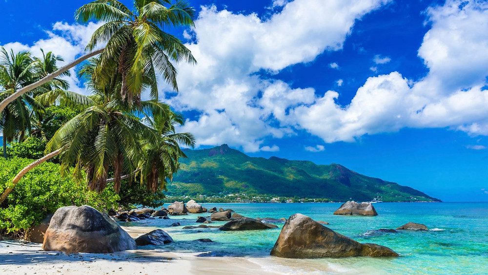 Аzure seas and palm trees Seychelles